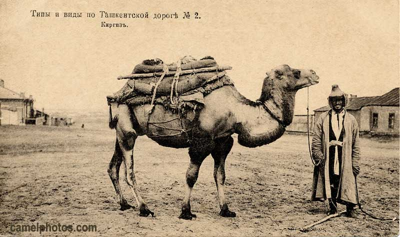 Image result for silk road old pictures